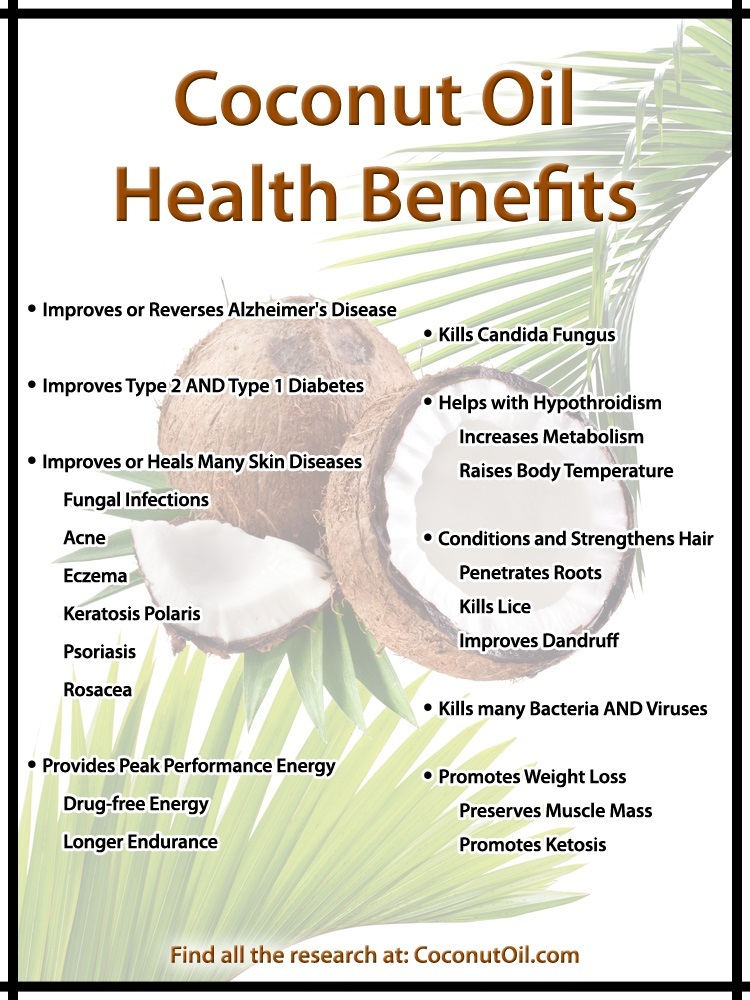Coconut Oil Health Benefits Infograph