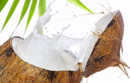 photo of coconut milk used to make coconut oil