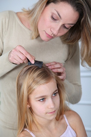Natural head lice treatment with coconut oil and apple cider vinegar photo