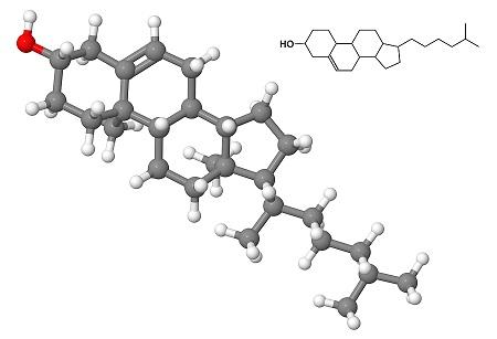 image of a cholesterol molecule