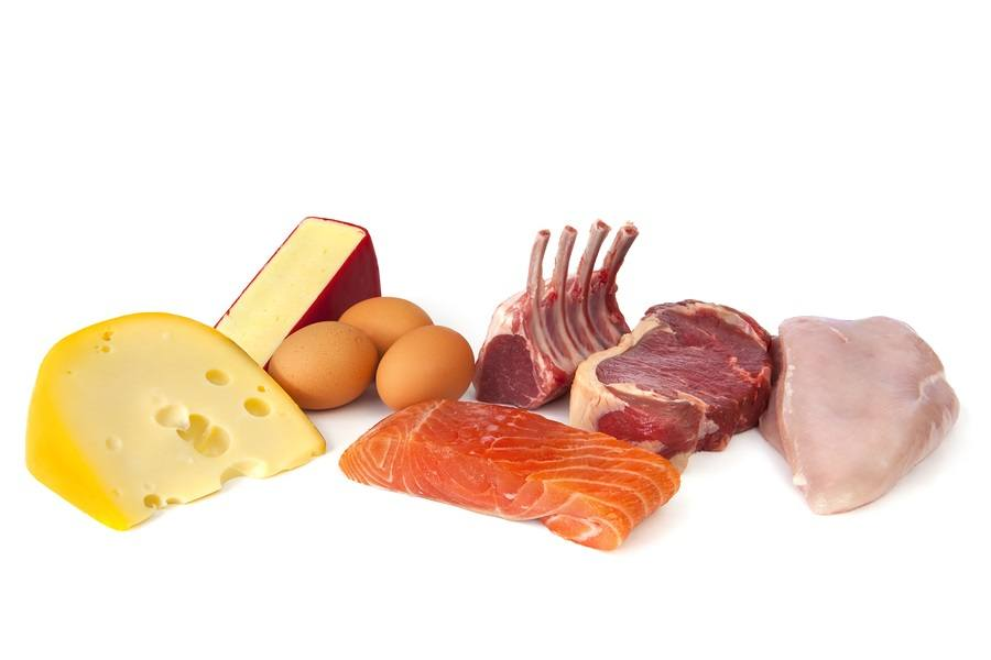 Foods-rich-in-protein-and-fat