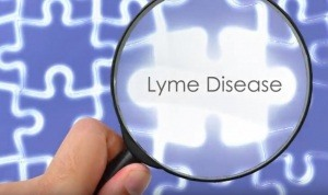 Lyme-Disease-Piece-of-Health-Puzzle-300x178