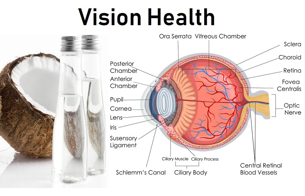 Human Eye internal Diagram with Coconut Oil images